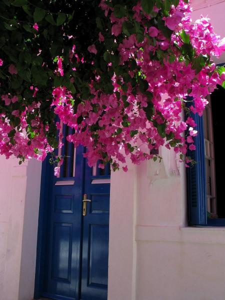 Kythnos Town, Kythnos, Kythnos Island Blue door - Chora Kythnos  Copyright: Δήμος Κύθνου - Municipality of Kythnos