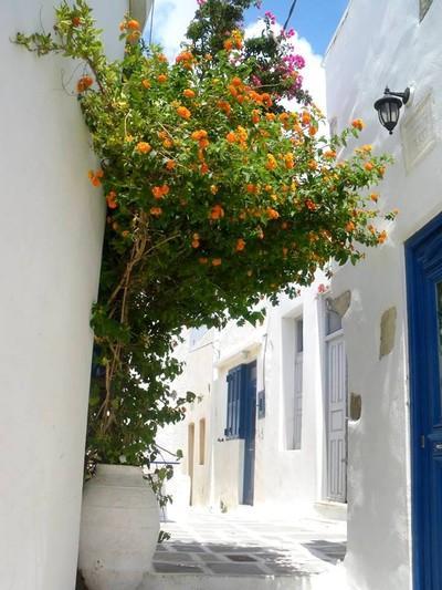 Serifos Town, Serifos, Serifos Island Σεριφος, Άνω χώρα.  Η πιο όμορφη χώρα, διακοπές με τις φίλες. - by Anna