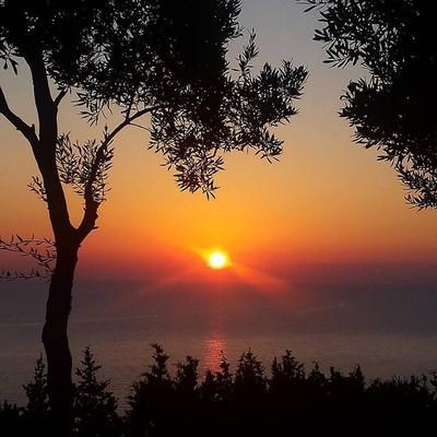 Gaios, Paxos, Paxos Island Paxos Island  Gaios - by Vasoulino