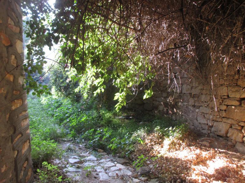 Chrousa, Syros, Syros Island Hidden footpath at Chroussa  Hidden footpath at Chroussa