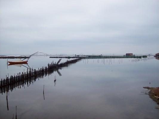 Mesologgi, Iera Poli Messologgiou, Aetolia-Acarnania Αιτωλοακαρνανία, Μεσολόγγι, λιμνοθάλασσα Κλείσοβας.  Μόνο γαλήνη μπορεί να νιώσει κανείς, αντικρίζοντας τις εικόνες που προσφέρει μια περιήγηση στη λιμνοθάλασσα Κλείσοβα. - by spidrman