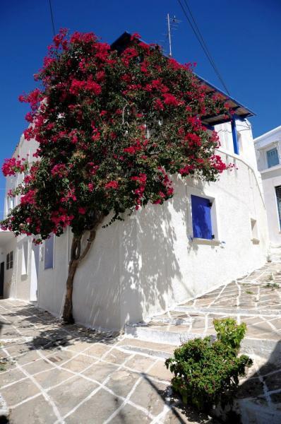 Kythnos Town, Kythnos, Kythnos Island House in Chora Kythnos  Copyright: Δήμος Κύθνου - Municipality of Kythnos
