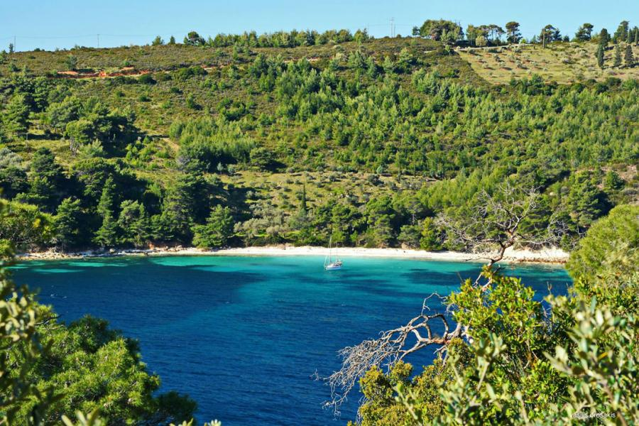 Alonnisos Island Katerina Vala beach  Photo by Vasilis Drosakis