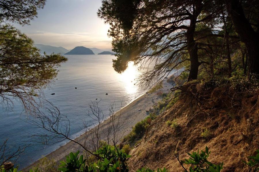 Alonnisos Island Vythisma beach  Photo by Vasilis Drosakis