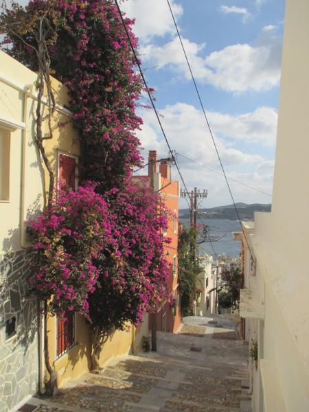Syros Island Bougainvillea on the steps of Vrondado (Ermoupolis)  Bougainvillea on the steps of Vrondado with view to the port