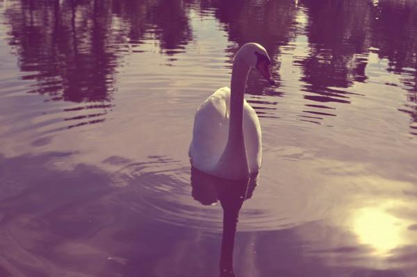 Lake of Beletsi - by eirini.hatz