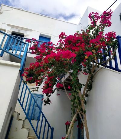 Folegandros Chora, Folegandros, Folegandros Island Folegandros  Chora - by Kallirroe