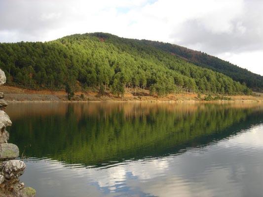 photo by Georgios Pazios, wikipedia.org